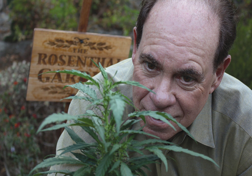 Ed Rosenthal hero of cannabis